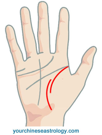Life Line Palm Reading Guide – Chinese Palmistry