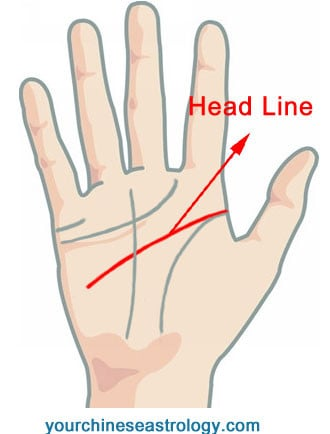 Palm Reading - Head Line
