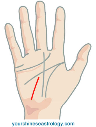 Sun Line, Apollo Line Palm Reading – Chinese Palmistry