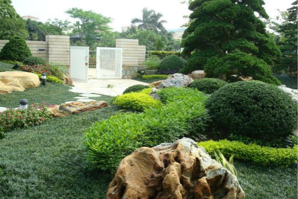 Planting Location