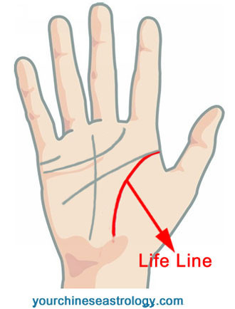 how to read your palm lines youtube